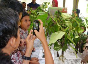 Studytour Lampung