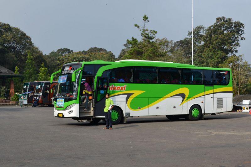 Bus Pariwisata Efisiensi Lampung