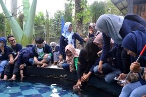 Kunjungan di Gembira Loka Zoo