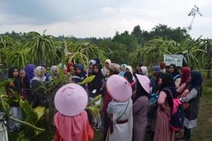 Kunjungan di Sabila Farm