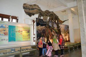kunjungan-di-museum-geologi